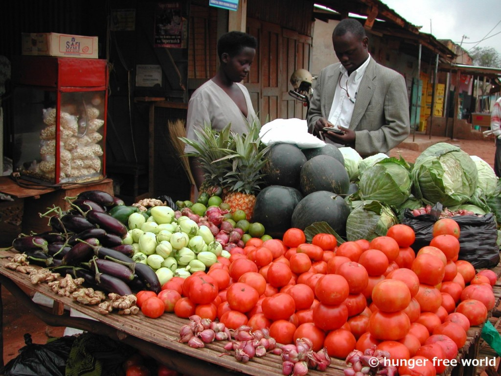 HFW 素材(4) ※カブンバ区の野菜売りスタンド